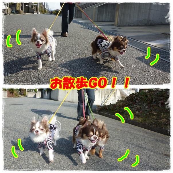 1page_20120404205508.jpg