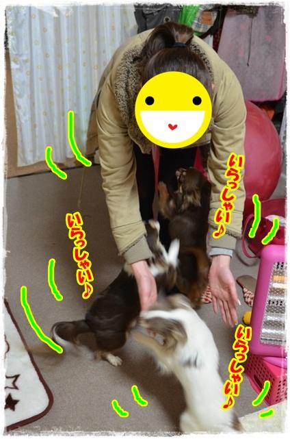 DSC_5632.jpg
