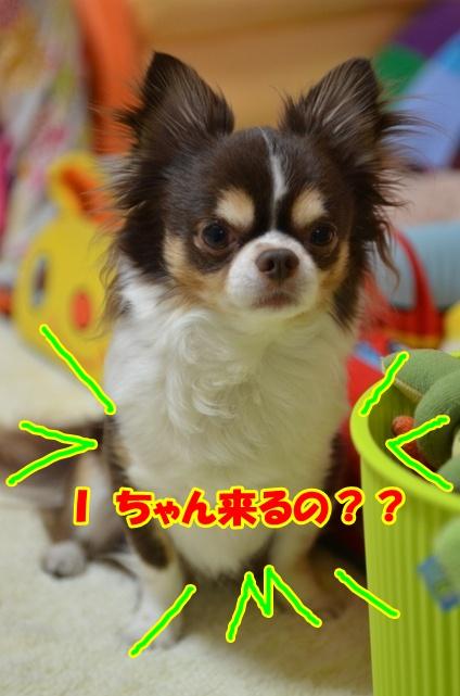 DSC_5645.jpg