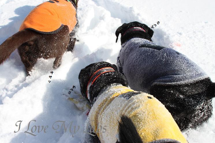 IMG_0536 (2)Hirugano Jan 2012