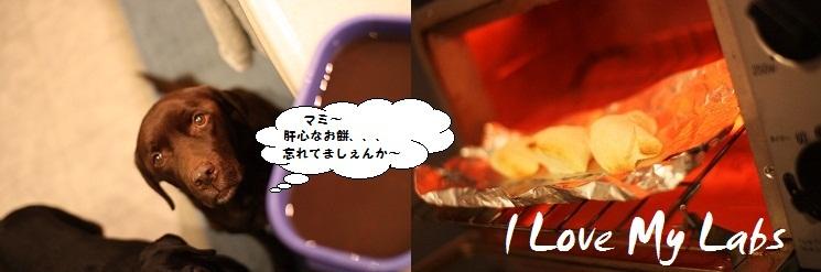 IMG_0268oshiruko.jpg