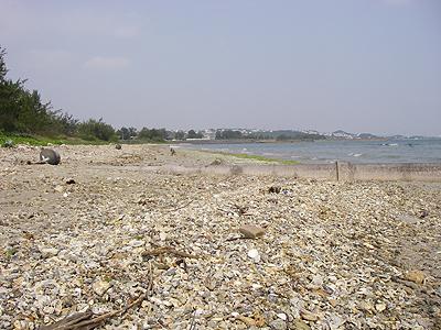 勝連の海岸-01
