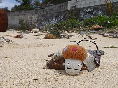 名護の漁港そば-08