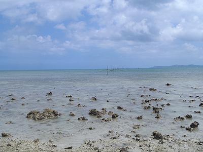0716泡瀬干潟-転石帯