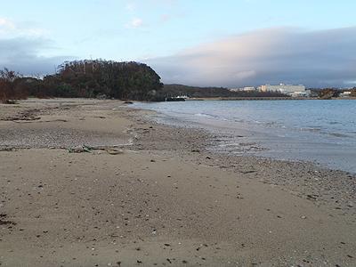 110815の海岸