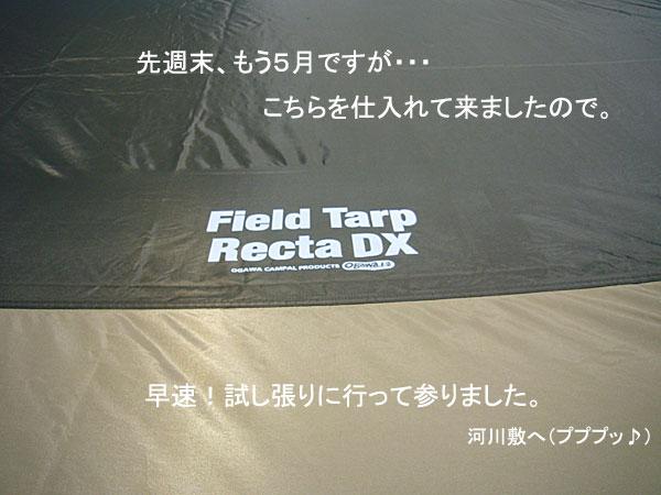 P1100067.jpg