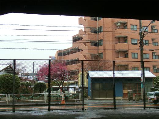 雪は小降りに