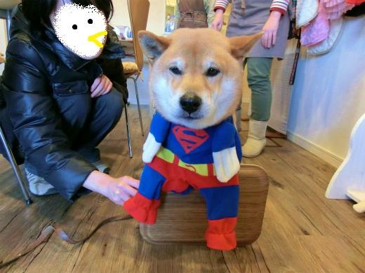 スーパーマン再び