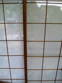DVC00018_20110929213240.jpg