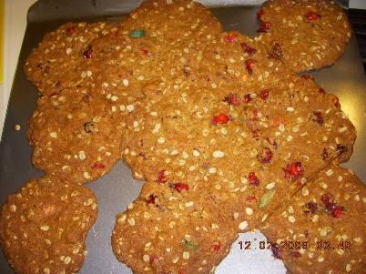 oatscookie1.jpg