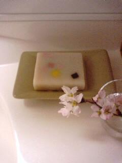 桜とサクラが咲いた