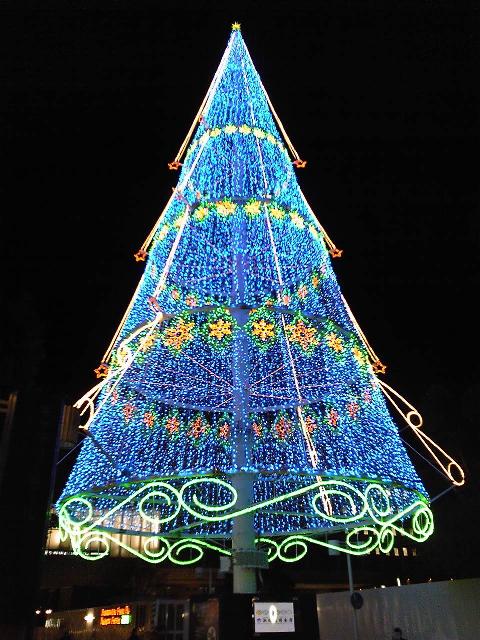 浜松のクリスマスツリー