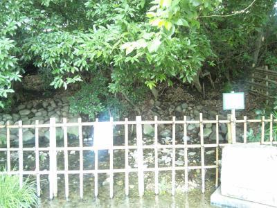 20100929-2.jpg