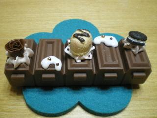 チョコピルケースブラウン系