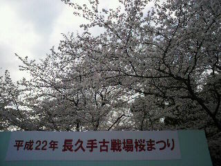 20100404 006