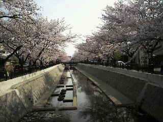 20100406 009