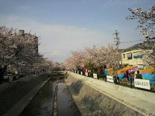 20100406 008