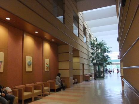 市民病院1