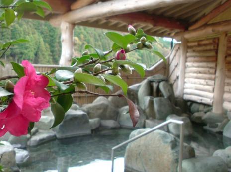 阿波温泉2
