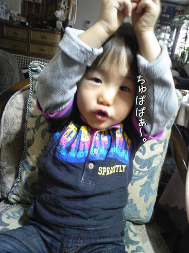 Image1830a_20111225025257.jpg
