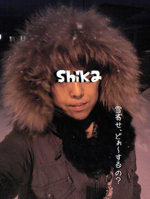 Image1880a_20111227031612.jpg