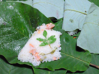 ホウ葉寿司1