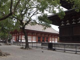 東寺-講堂
