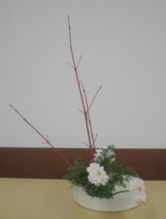 20101221d.jpg