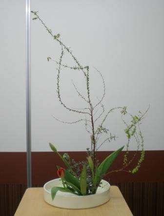 2011112d.jpg