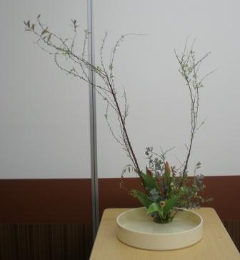 2011112i.jpg