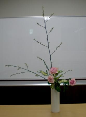 2011119a.jpg