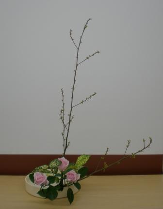 2011119d.jpg