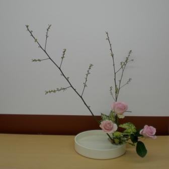 2011119e.jpg