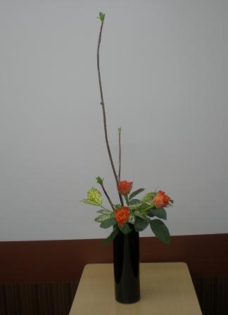 2011119h.jpg