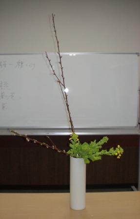 2011217a.jpg