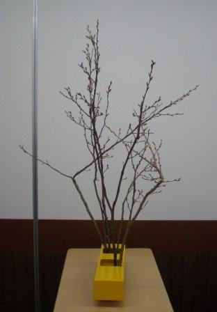 2011217e.jpg