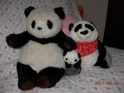 我が家のパンダ