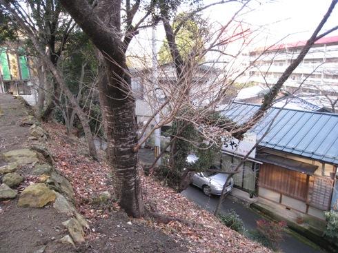 信夫山脇食堂
