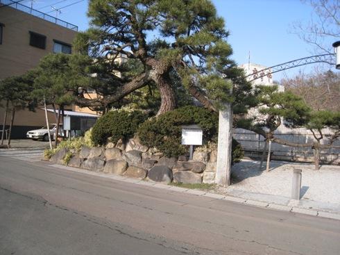 飯坂散歩8舞鶴の松