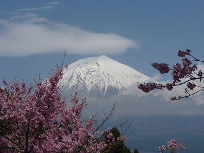 景色(富士山)