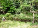 日本庭園内写生