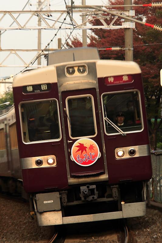 6300-higashinakajima-momiji-dpp-nx.jpg