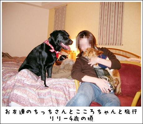 IMGP0001H.jpg