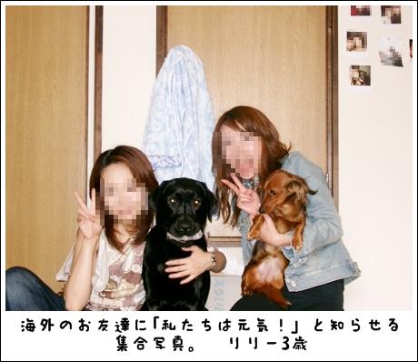 IMGP0006_13.jpg
