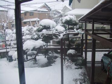 DSCF8430_20130114雪