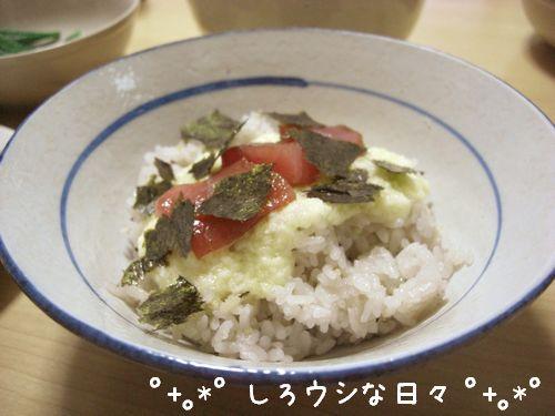 CIMG4339-blog.jpg