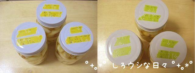 rakkyou_2011_04.jpg