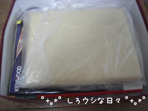 umeboshi_08.jpg
