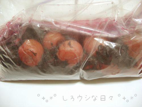 umeboshi_15.jpg