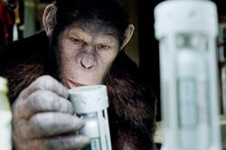 映画「猿の惑星:創世記(ジェネシス)」